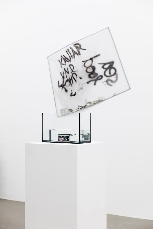 Daniel Angermann – Thunfisch mit Beilage Ansicht 01