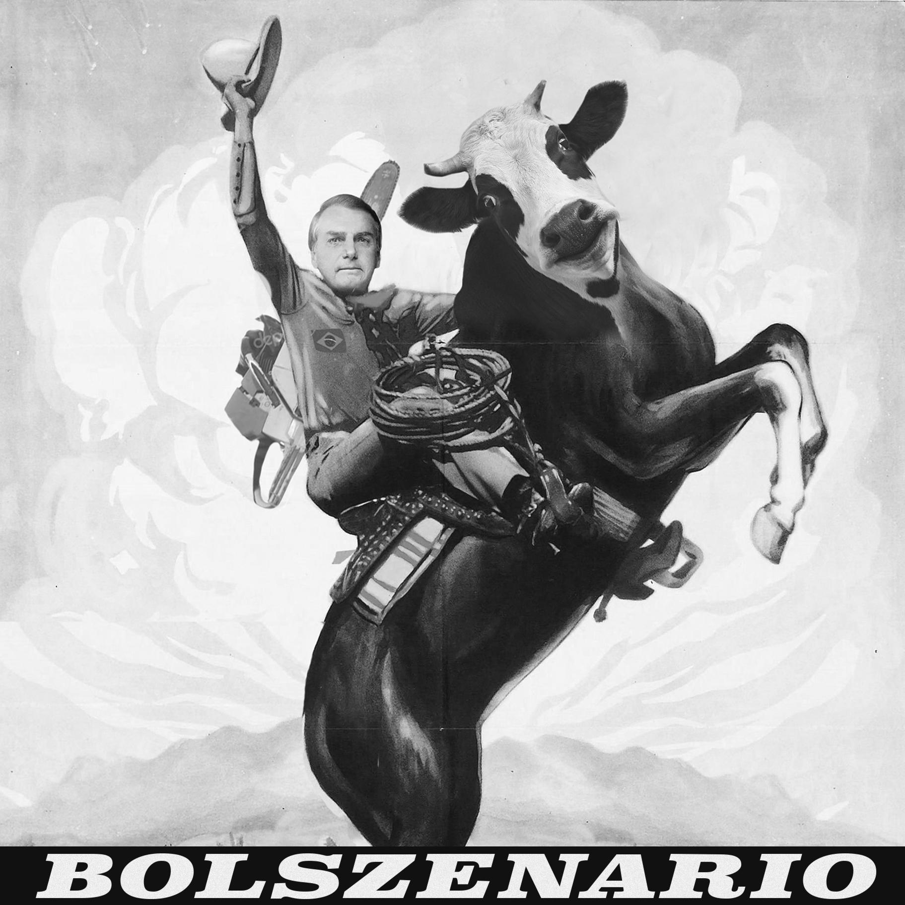 Jair Bolsonaro | Fire |Amazonas | Rainforest