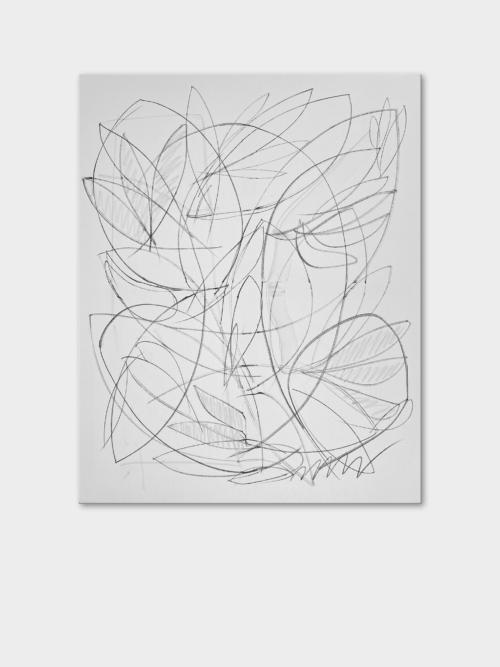 Daniel Angermann | Painting | Organic | Canvas